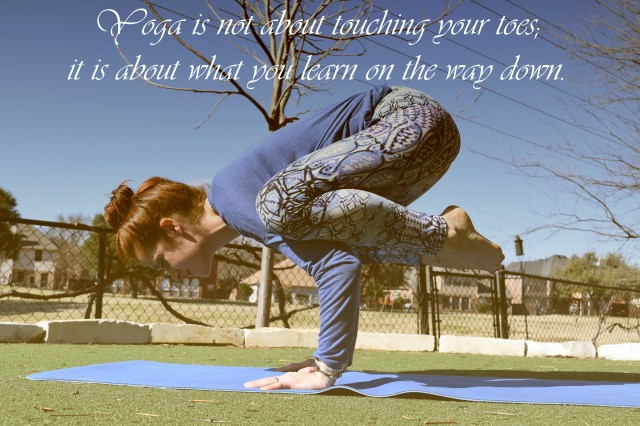 this yogi life